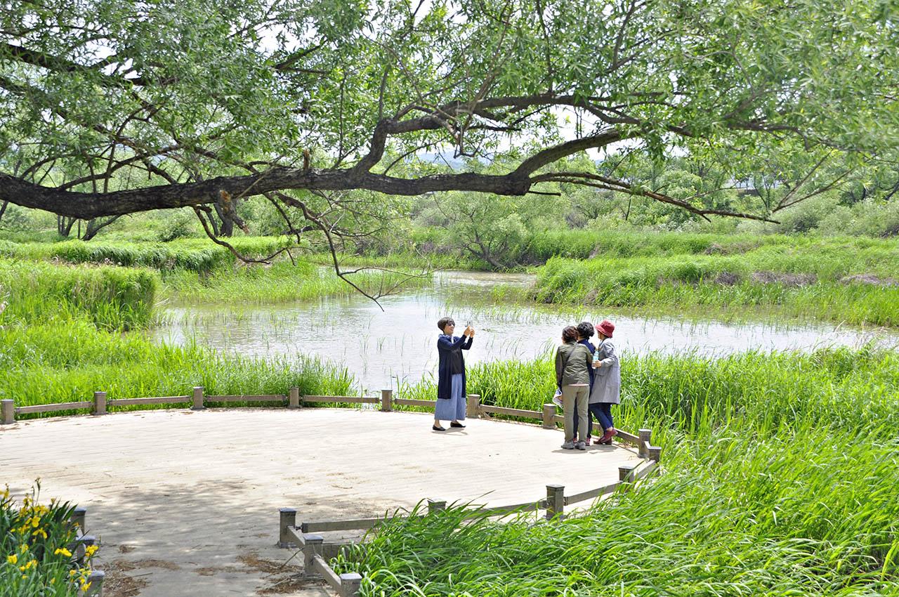 Hwapocheon wetland