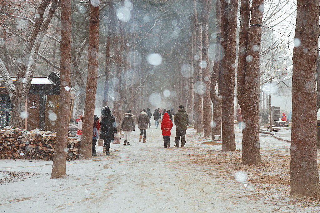 Snowing-Nami-Island.jpg